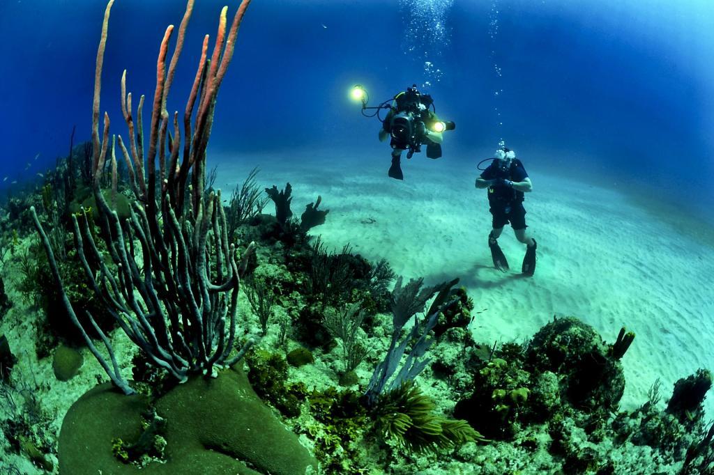 diving immersioni in sicilia3